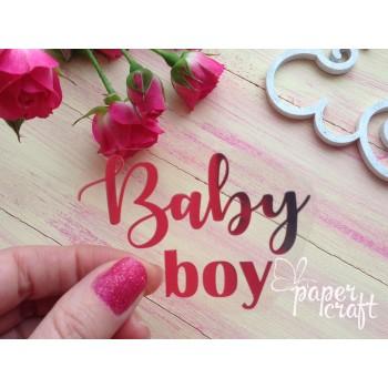 Baby boy  TPSM-004